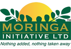 Moringa Initiative Ltd - Easy Price Book South Africa